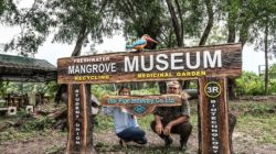 Freshwater Mangrove Museum Established to Enhance Campus Health and Sustainability